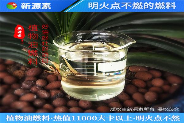衡阳衡东饭店植物油燃料无醇植物油一起生产的厂家有哪些