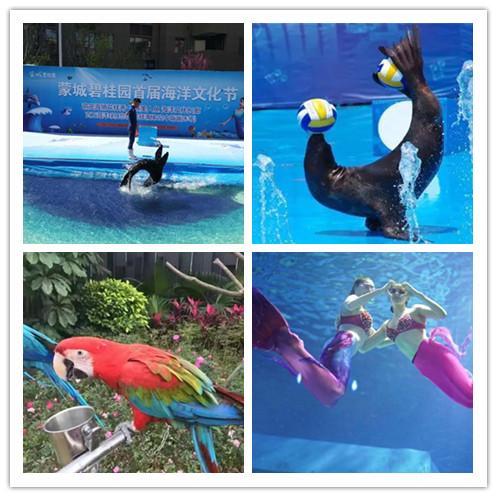 官渡海洋动物表演鱼缸水母展览诚信公司