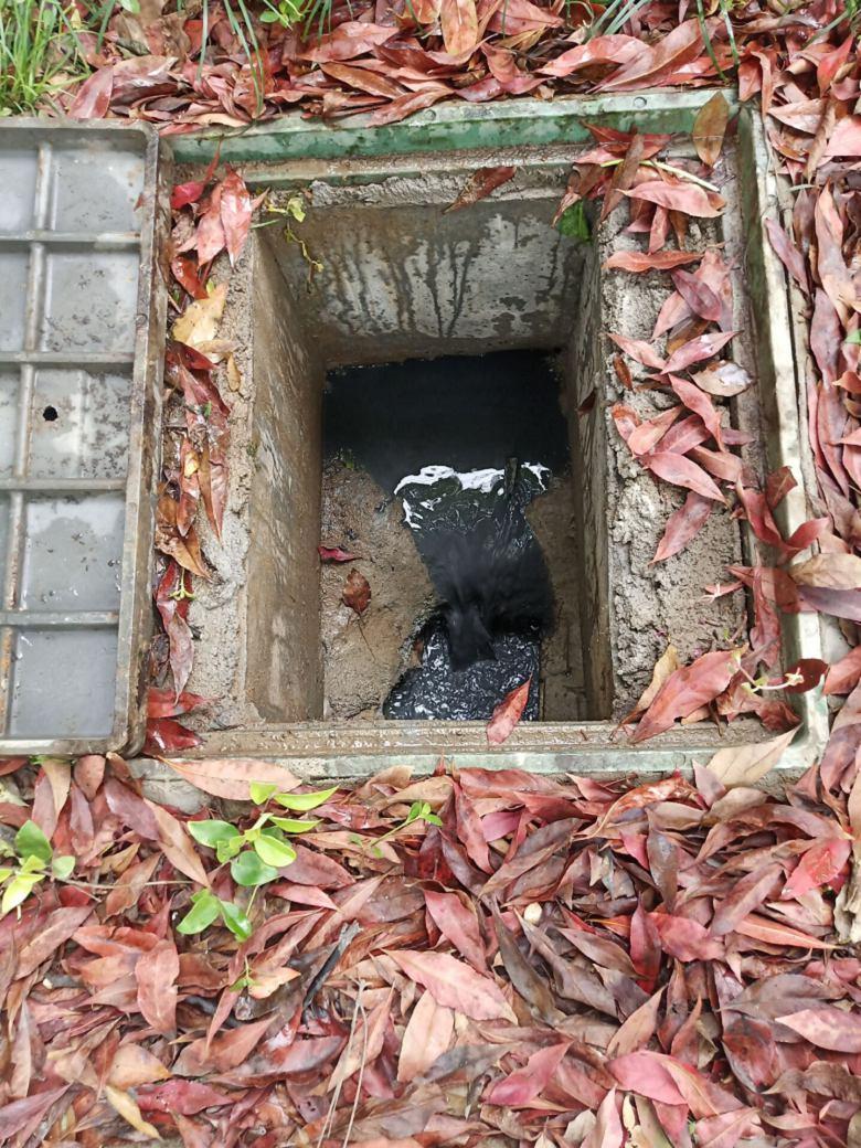 越城区抽化粪池哪家好