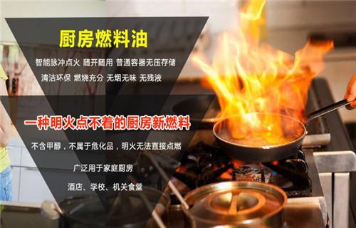 天津无醇燃料一键启动炉灶