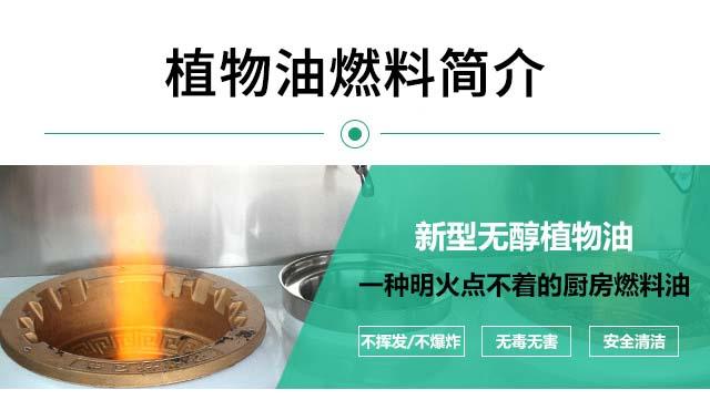 川汇免气泵新型无醇燃料炉具实体企业