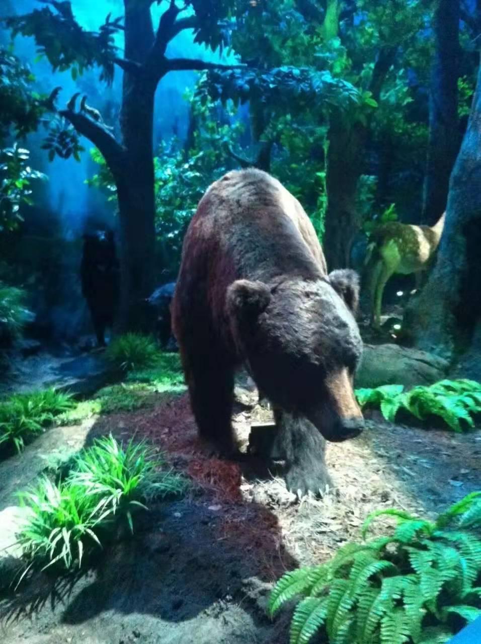 玉溪仿真熊猫模型图片