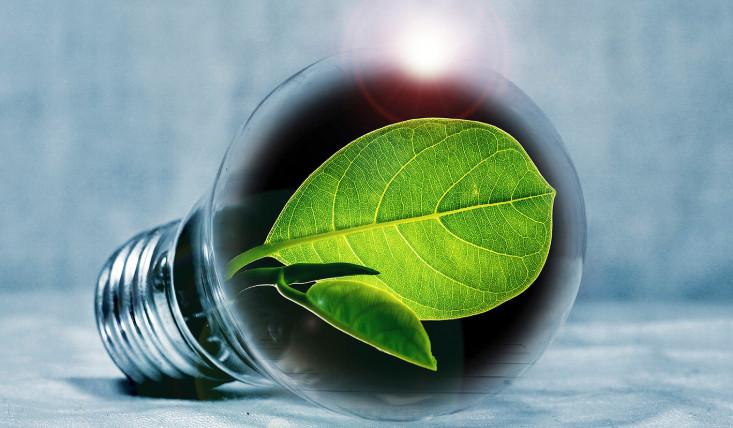 河南开封新能源无醇燃油厨房燃料2020小本创业项目