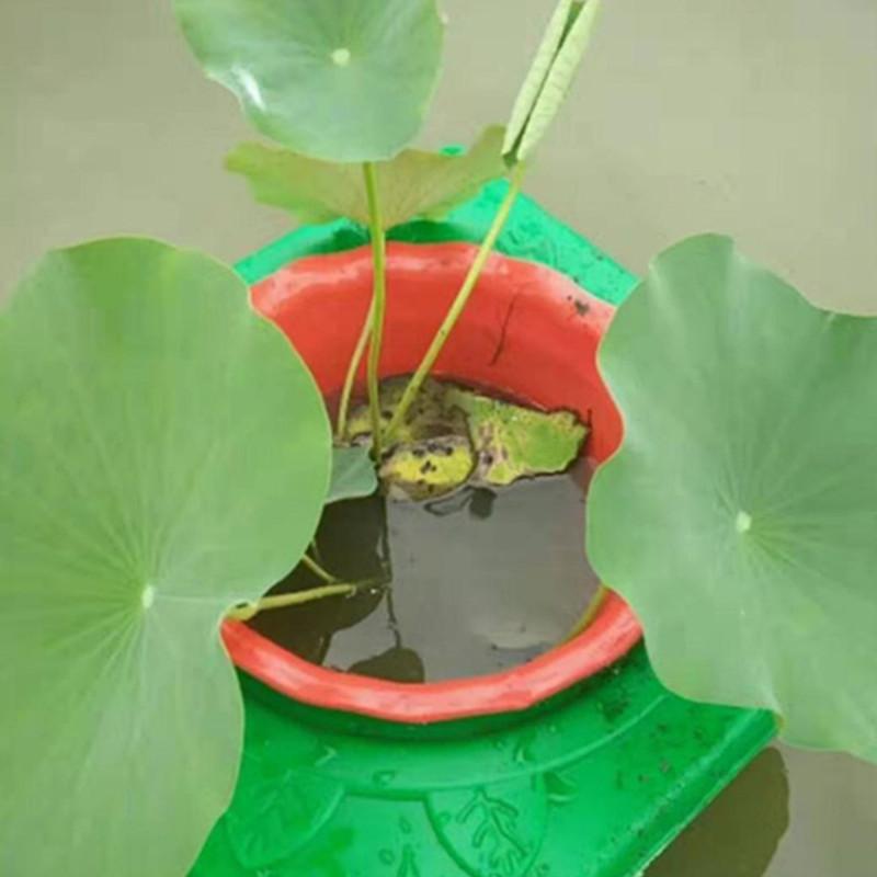 通化水上种植浮岛方案
