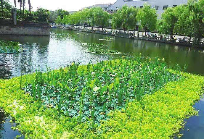 吴兴水生种植浮盆-工方案
