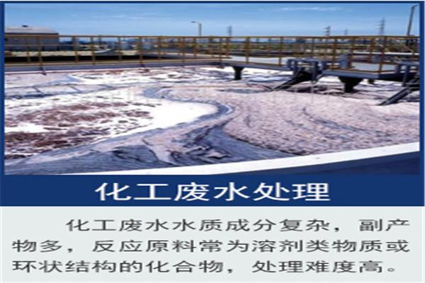 喀什市污水处理微生物菌种培养方法