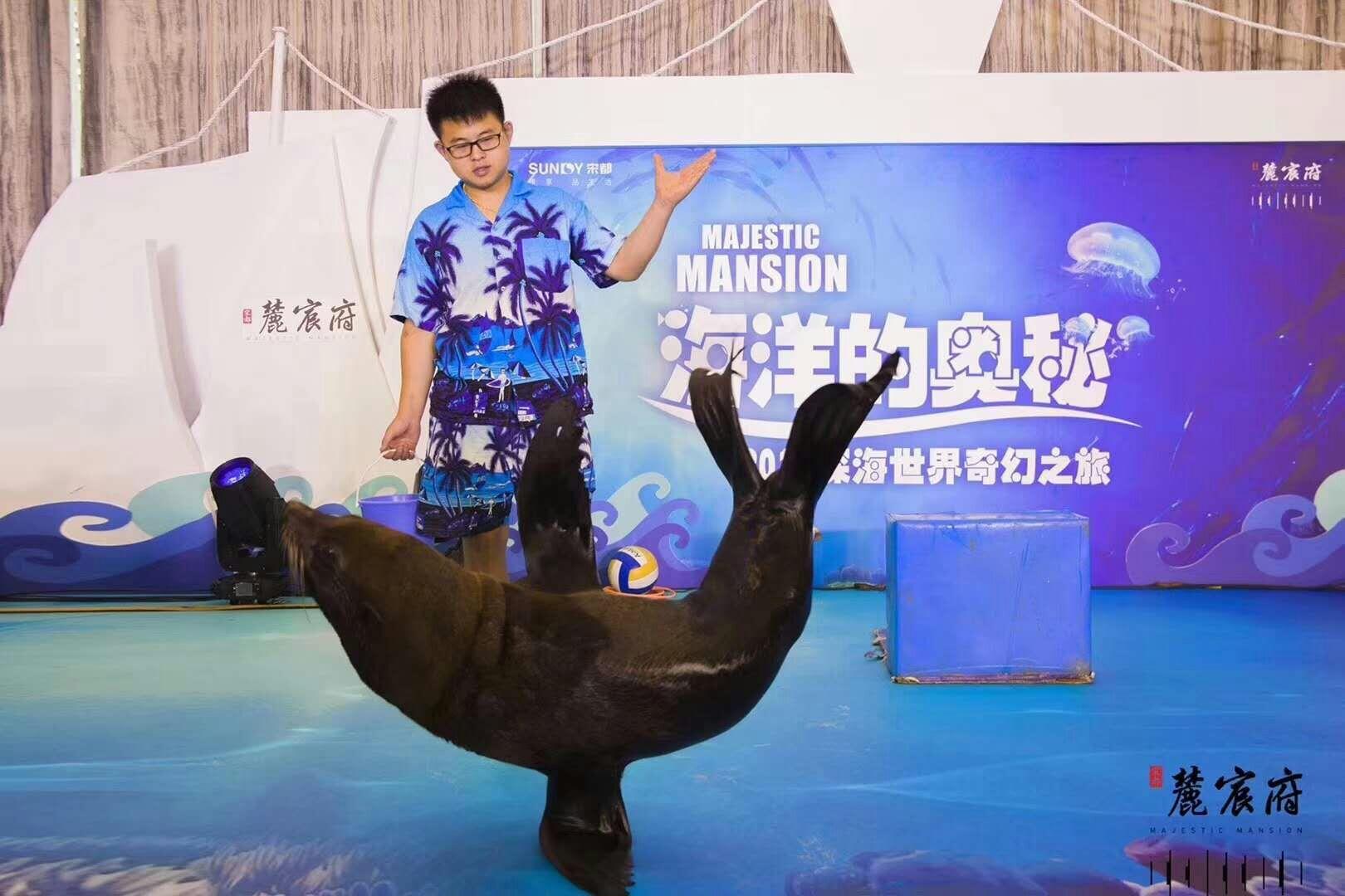 泰山海洋动物鱼缸水母展志成租赁公司