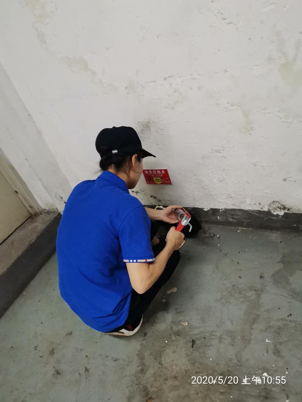 专业团队:杭州乔司灭鼠报价
