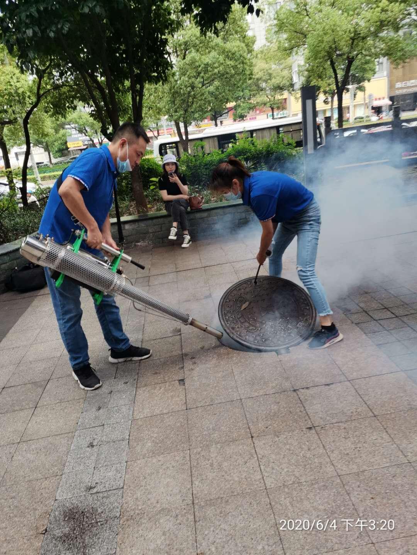 专业团队:杭州乔司灭白蚁-【公司】