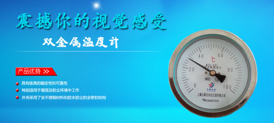 WSS-406轴向型双金属温度计济南
