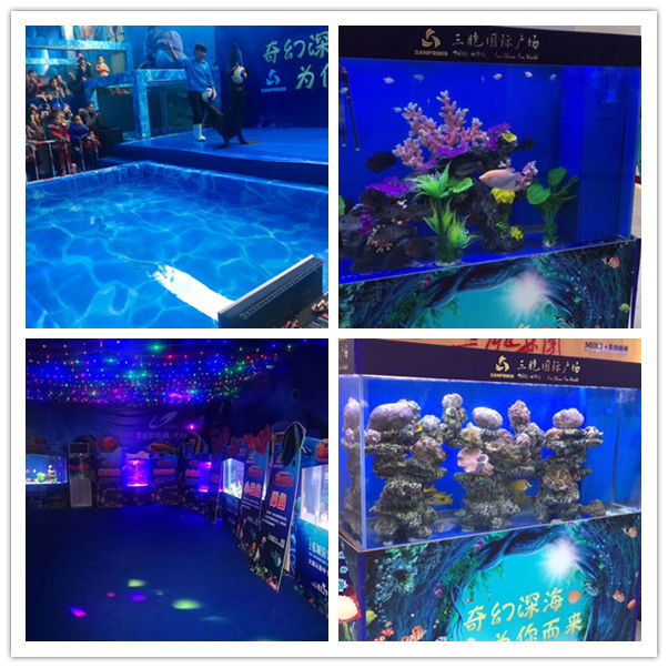 临沧海洋动物鱼缸水母展览信誉公司