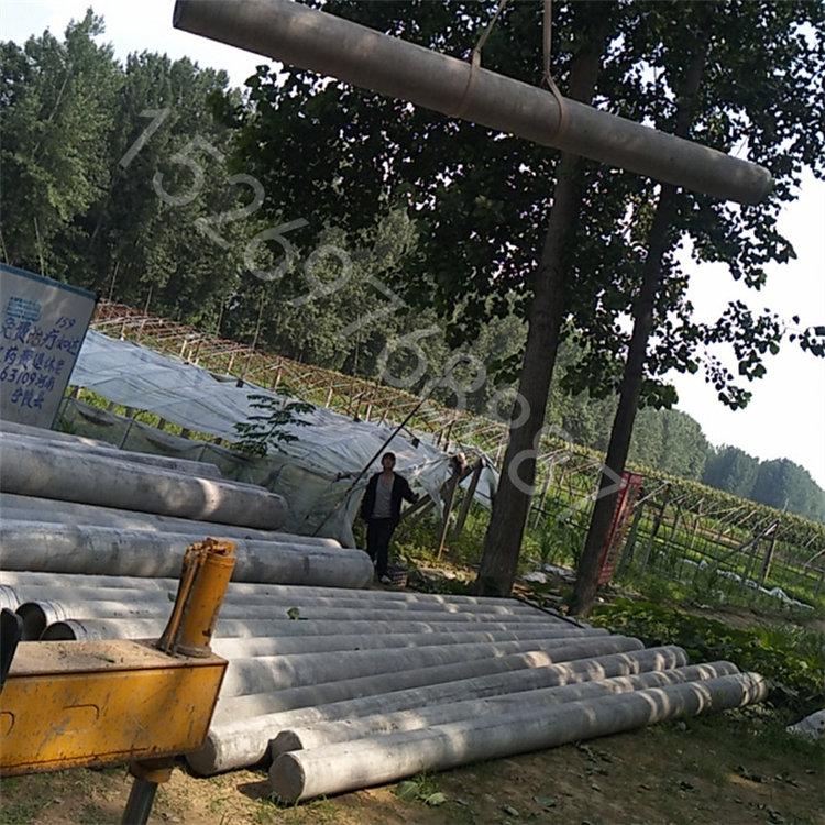 赣州上犹混凝土电杆多少钱一根大量现货
