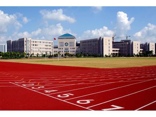亳州运动场塑胶跑道厂家优质服务