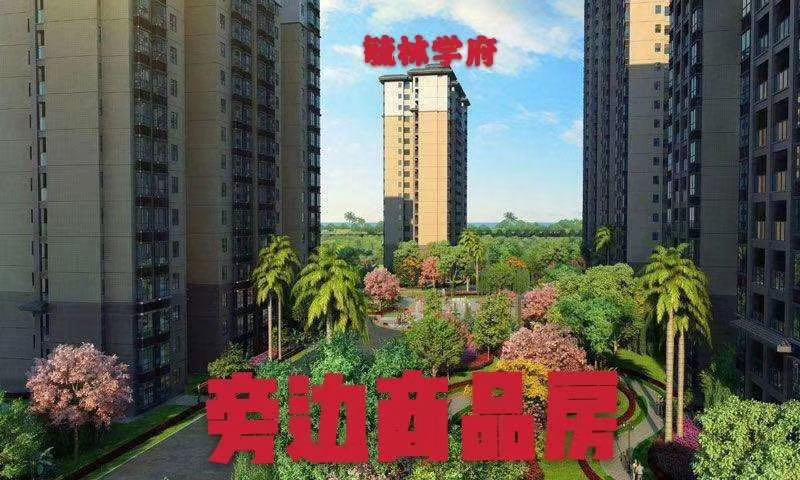 龙华大浪小产权【毓林学府】全新户型绝非改造 9900元/平米起双楼梯
