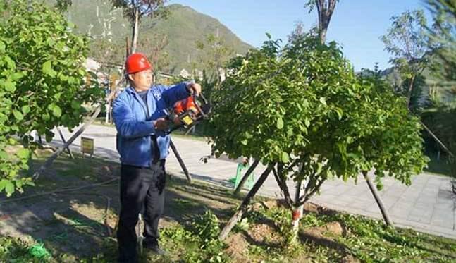 福州市考绿化工证找专业机构报名培训稳妥可靠全程了解