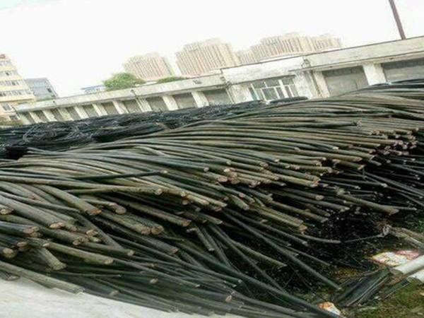 广州黄埔回收各种旧电缆公司欢迎致电