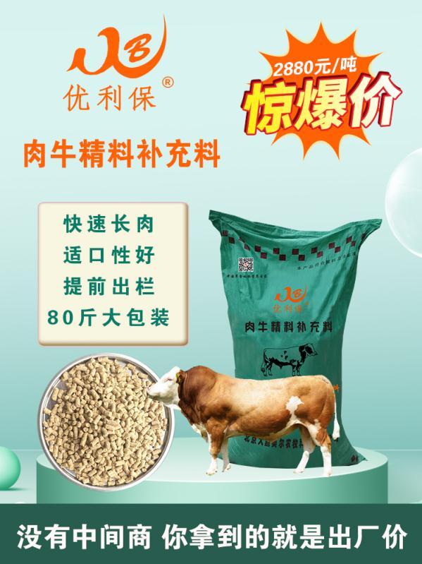 (西门塔尔牛吃什么精料增肥快犊牛饲料的说明)K收费低贵州遵义