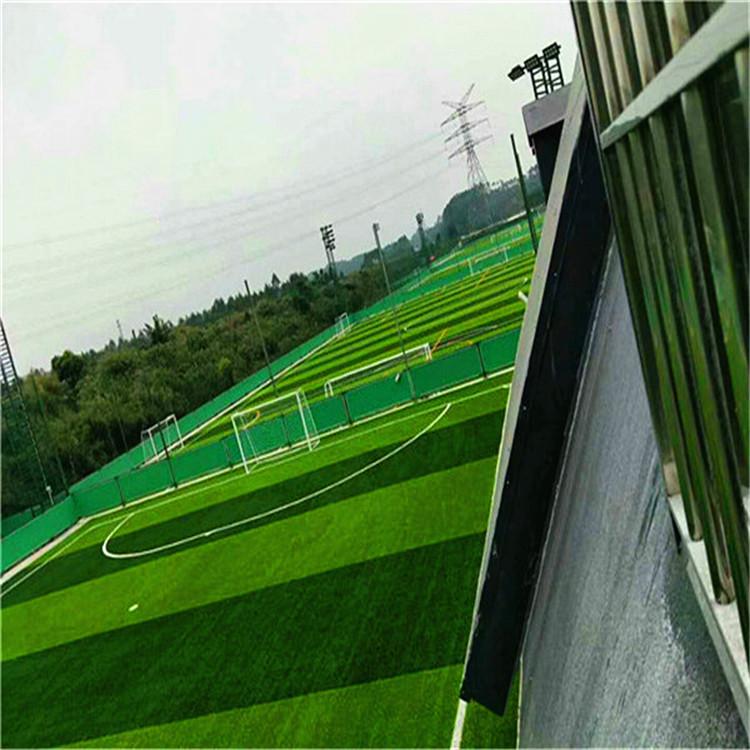 【厂家】阳明免填充人造草坪专业生产安装