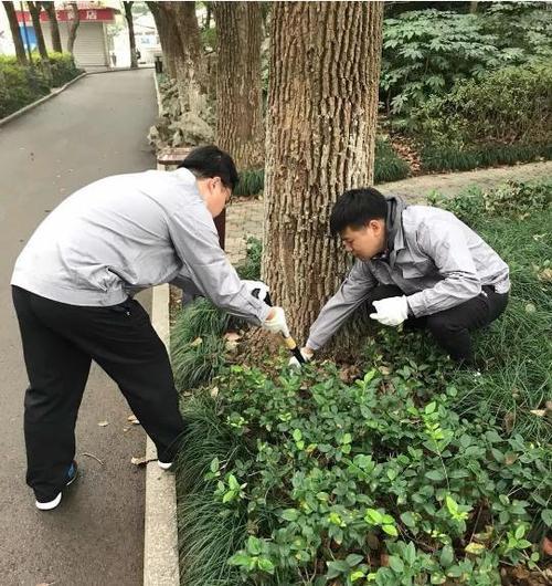 广元市考有害防治工程师证推荐个靠谱的报考机构