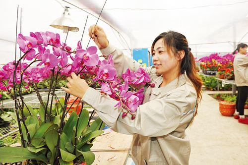 衢州花卉工证网上报名入口报考要求有什么流程