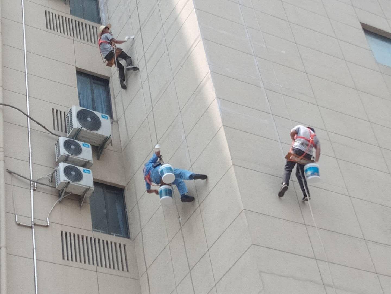 上海南汇区万祥镇屋顶保温咨询电话
