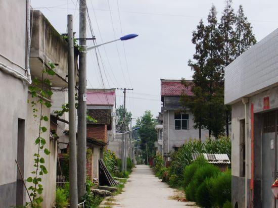 垦利路灯销售价格/太阳能路灯安装