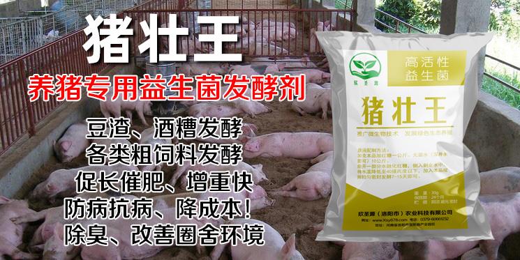 阜阳市有益菌发酵剂零售价格