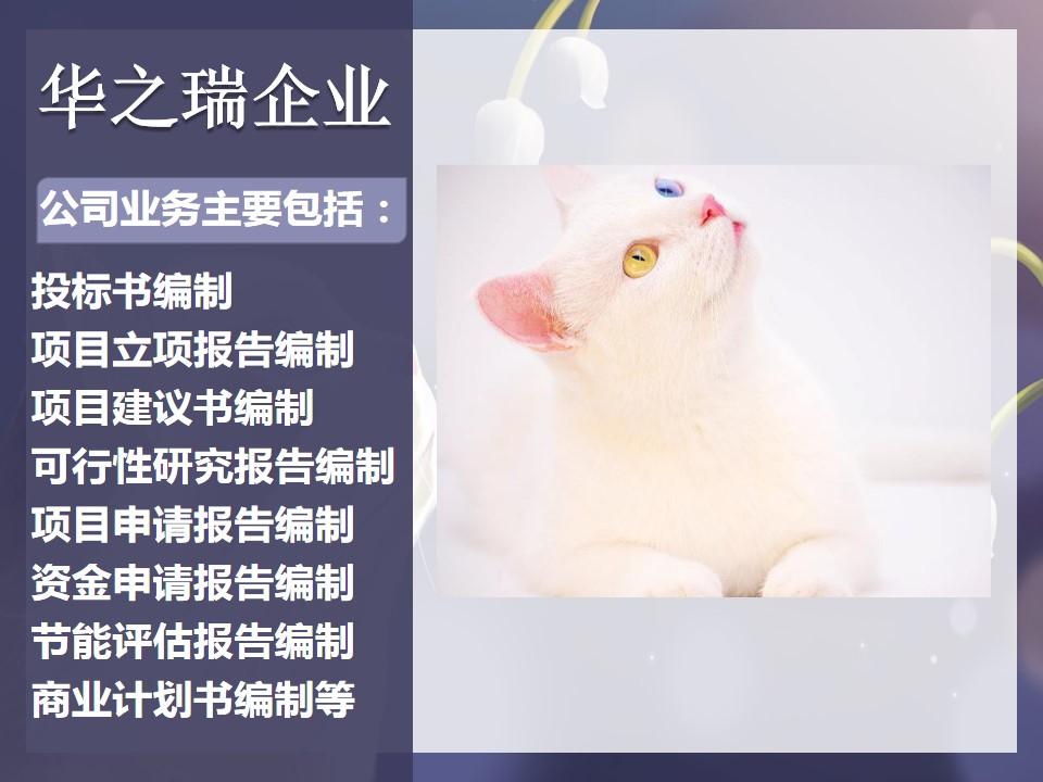 宜君县做可行性研究报告/项目报告制作公司专业+专注