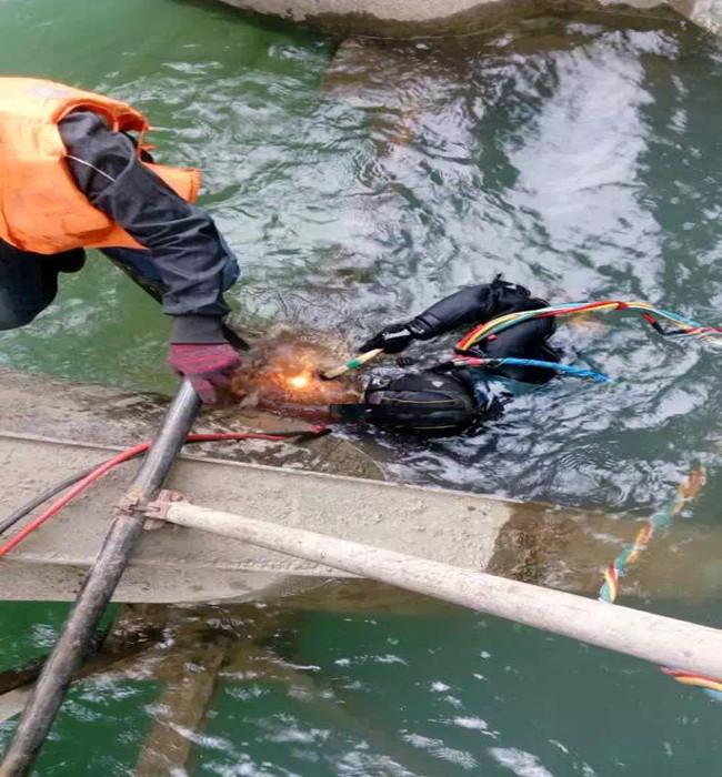 福州市蛙人服务公司- 能做好潜水工作