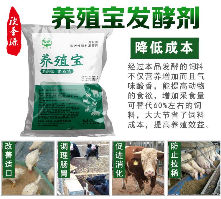 豆渣喂牛的合理方法是什么养殖有益菌
