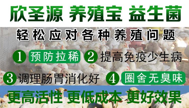 利用豆渣喂羊育肥牛的正确方法豆渣发酵剂价格