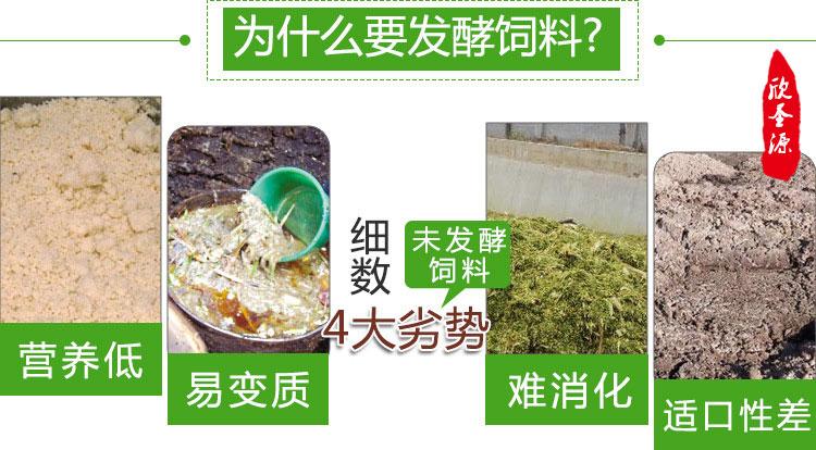 性价比高的豆渣发酵剂厂家批发豆腐渣喂牛技术