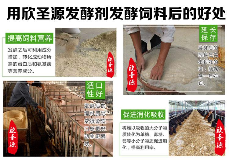 母牛喂豆渣后老是拉稀腹泻什么原因豆渣发酵剂批发