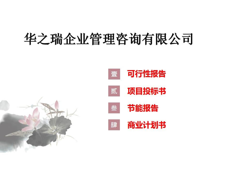 剑阁县专业写商业计划书本地业务服务