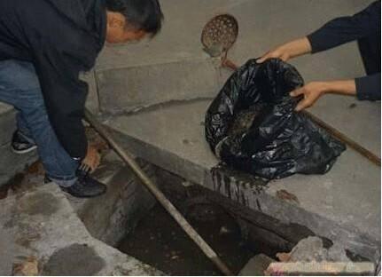 进入:葫芦岛市兴城市抽化粪池公司怎么收费