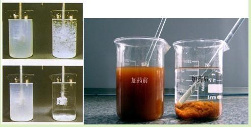 随州培菌)葡萄糖——原厂发货_价格亲民