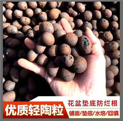 会泽湿地公园陶粒厂家供应-行内性价高