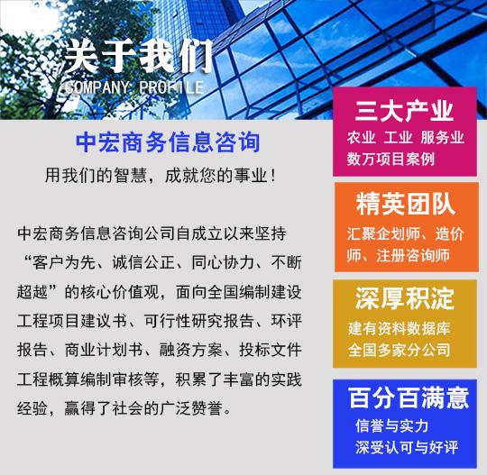 吕梁柳林商业策划书编写编撰-做大项目