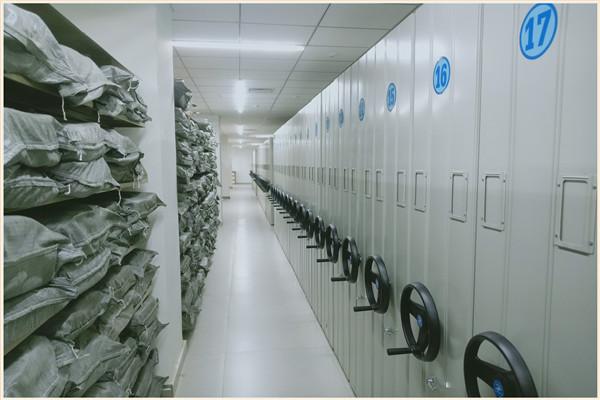 鄂州档案室密集柜香樟木泽信钢木