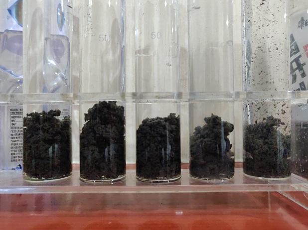 天津沙厂聚丙烯酰胺助凝剂-欢迎光临
