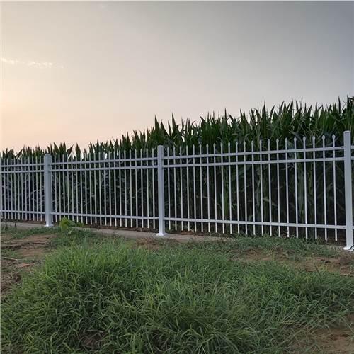 山东莱芜市政护栏价格