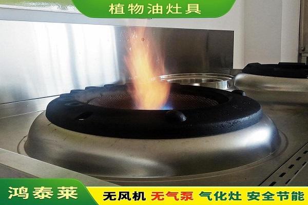 株洲炎陵生物环保燃料鸿泰莱燃烧机降低油耗 使用安全