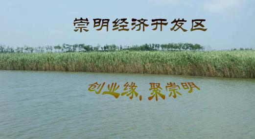 上海奉贤区广告设计有限公司疑难问题如何解决