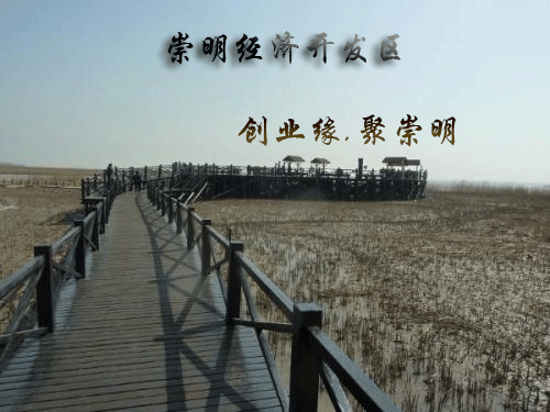 上海杨浦核定征收的条件