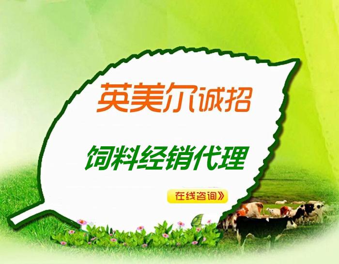 养羊预混料是什么反刍动物饲料厂家\\(鄂州梁子湖)