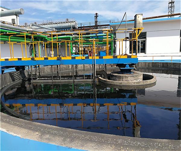 2021·德州洗砂泥水分离剂——实力厂家