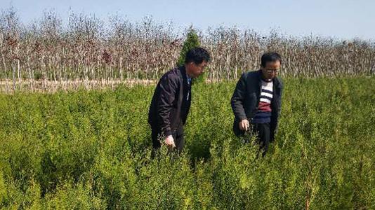 郑州有害生物防治员含金量高吗 可不可以联网查询在哪里查dm