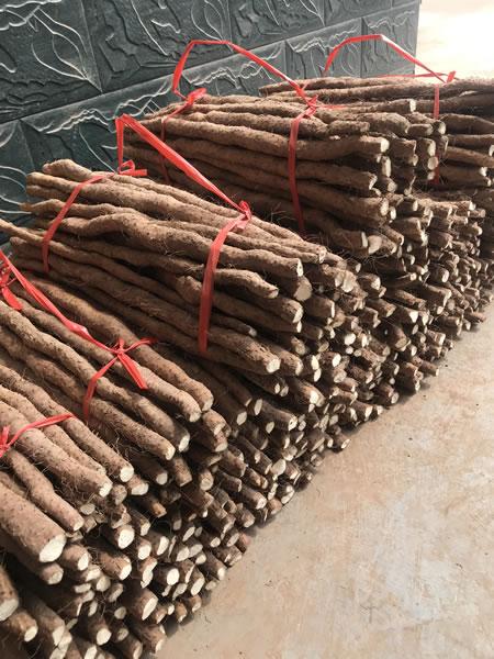 淮山药粉种植基地新鲜淮山,干的怀山药怎么去皮