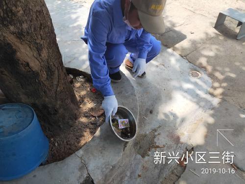沧州考白蚁防治工证容易考网上可查培训需要什么条件轻松报名