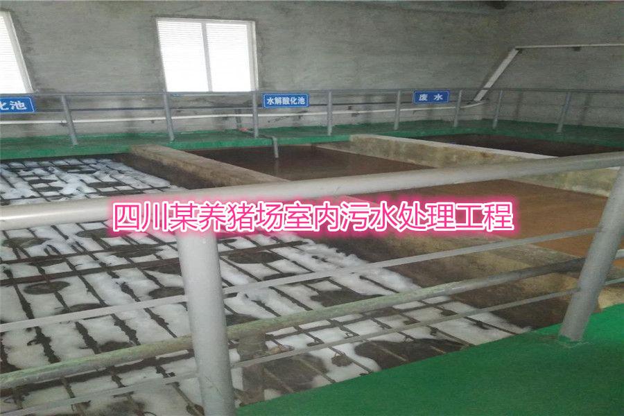 桂林全州乡镇养殖场污水处理厂家